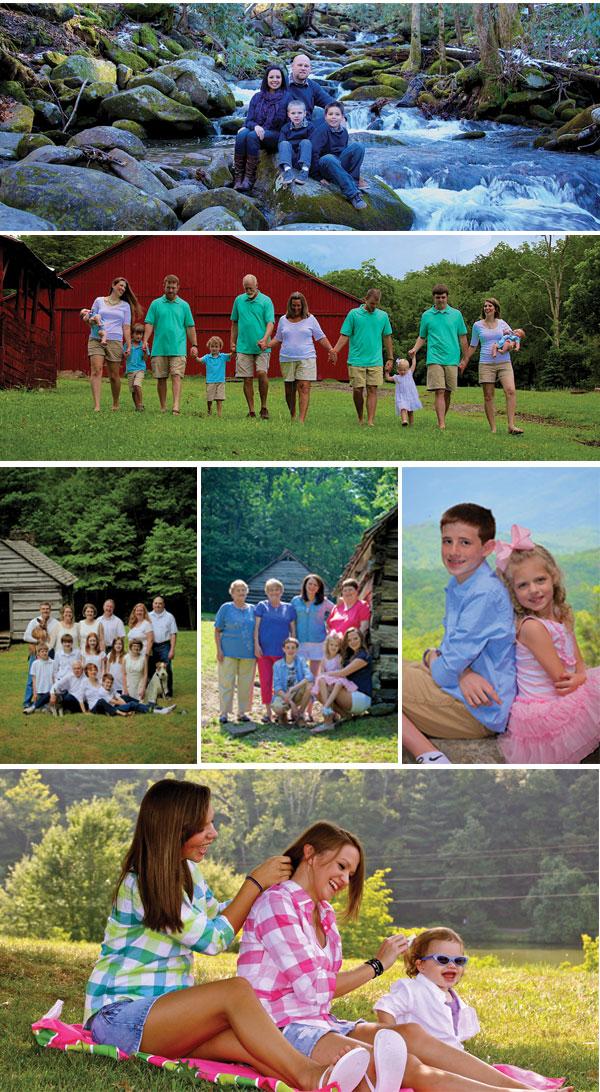 ALP_Families