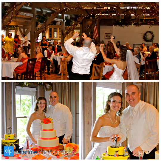 Barn-Event-Center-Of-The-Smokies_Townsend-TN_Wedding-Photographer-Gatlinburg-Pigeon-Forge-Sevierville_Bridesmaids-County-Mountain-View-Cake-cutting