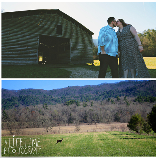 Cades-Cove-Marriage-Proposal-Gatlinburg-TN-Secret-Photographer-Pigeon-Forge-Smoky-Mountains-wedding-photo-shoot-session-11