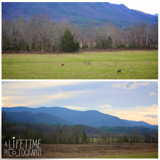 Cades-Cove-engagement-proposal-wedding-marriage-Townsend-Photographer-Gatlinburg-Pigeon-Forge-Knoxville-TN-Smoky-Mountain-1