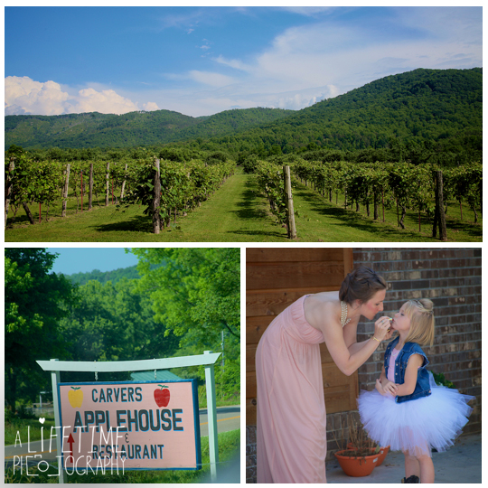 Carter's-Apple-Restaurant-Vinyard-Orchard-Applehouse-Wedding-Photographer-Cosby-Gatlinburg-Pigeon-Forge-Smoky-Mountains-photography-independant-Baptist-Church-ceremony-1