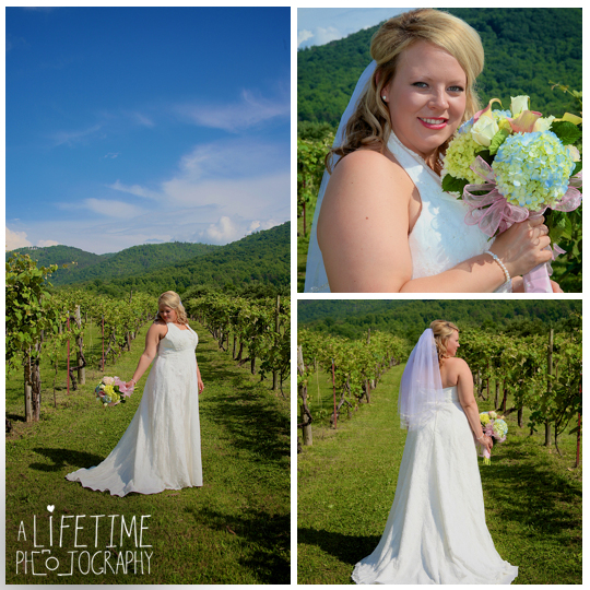 Carter's-Apple-Restaurant-Vinyard-Orchard-Applehouse-Wedding-Photographer-Cosby-Gatlinburg-Pigeon-Forge-Smoky-Mountains-photography-independant-Baptist-Church-ceremony-2
