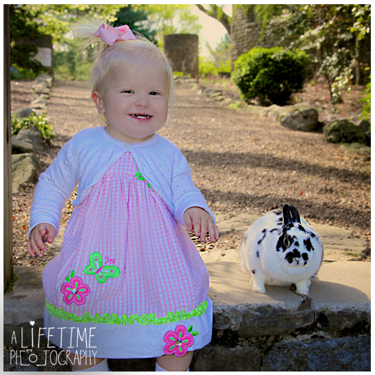 Easter-Bunny-Pictures-kids-Knoxville-TN-Photographer-Botanical-Gardens-Spring-Photography-rabbit-Maryville-Seymour-Sevierville-Pigeon-Forge-Gatlinburg-TN-Townsend-Clinton-Powell-2