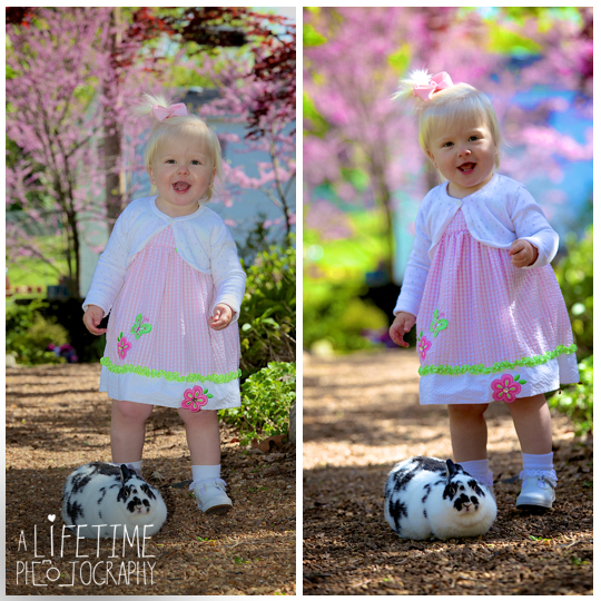 Easter-Bunny-Pictures-kids-Knoxville-TN-Photographer-Botanical-Gardens-Spring-Photography-rabbit-Maryville-Seymour-Sevierville-Pigeon-Forge-Gatlinburg-TN-Townsend-Clinton-Powell-6