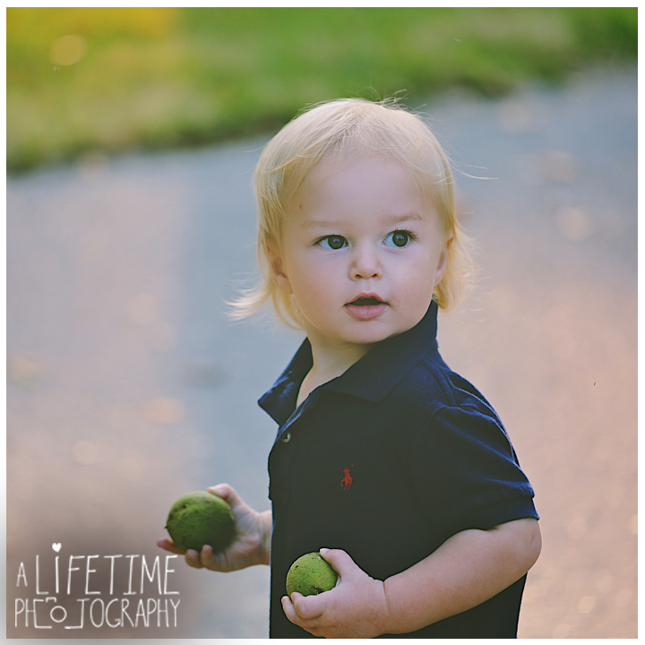 Emerts-Cove-Family-Photographer-Smoky-Mountains-Gatlinburg-Pigeon-Forge-Knoxville-Session-Pictures-kids-portraits-9