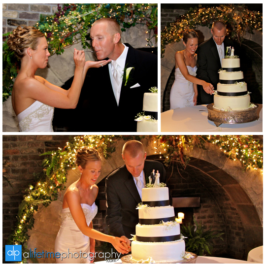 Foundry_Worlds_Fair_Park_Knoxville_TN_Wedding_Photographer_Photography_Pictures_Bride_Groom_Cutting_Cake