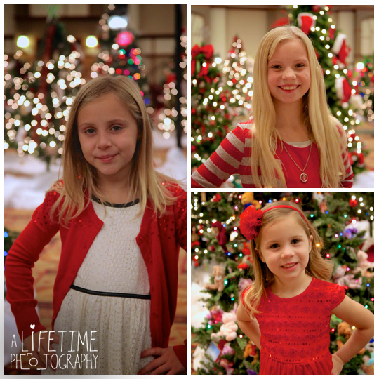 Gatlinburg-Festive-of-trees-Family-Christmas-Photos-Pictures-Pigeon-Forge-Knoxville-Sevierville-Seymour-Kodak-Smoky-Mountains-Pittman-Center-Wears-Valley-Townsend-10