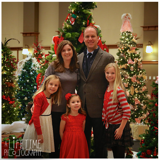 Gatlinburg-Festive-of-trees-Family-Christmas-Photos-Pictures-Pigeon-Forge-Knoxville-Sevierville-Seymour-Kodak-Smoky-Mountains-Pittman-Center-Wears-Valley-Townsend-9