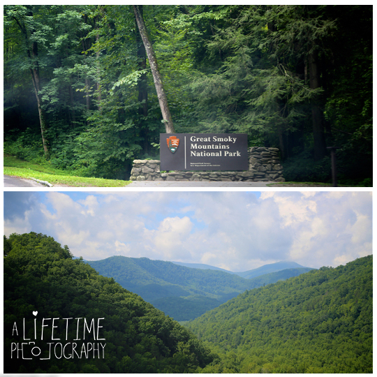Gatlinburg-Marriage-proposal-secret-photographer-Space-Needle-Mynatt-Park-Pigeon-Forge-Knoxville-Smoky-Mountains-Sevierville-Dandridge-1