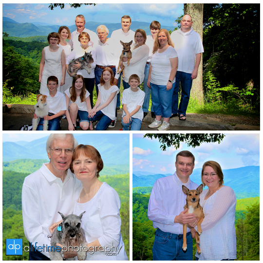 Gatlinburg-TN-Family-Photographer-Smoky-Mountain-Photography-Sevierville-Pigeon-Forge-Townsend-Cabin-Mountain-view-Reunion-Roaring-Fork-Motor-Nature-Trail-large-families-Pictures-Session-1