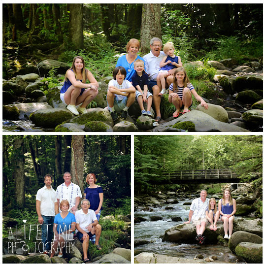 Greenbriar-Family-Photographer-Smoky-Mountains-Gatlinburg-Pigeon-Forge-Tn-Tennessee-Reunion-2
