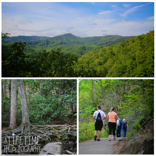 Laurel-Falls-Marriage-proposal-Secret-Gatlinburg-Pigeon-Forge-Smoky-Mountains-Photographer-Waterfall-1