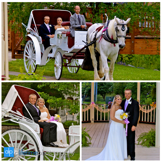 Newlywed-Wedding-loft-Couple-horse-carriage-Downtown-Jonesborough-loft-gazebo-Photographer-Johnson-City_Kingsport-Bristol_Tri-Cities