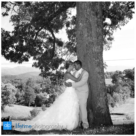 Newport-Pigeon_Forge-Gatlinburg-Sevierville-Knoxville-TN-wedding-photographer-marriage-photography-photos-bride-groom-newlywed-home-outdoor-ceremony-bridesmaids-bridal-flower-girl-gromsmen-bridal-party-19