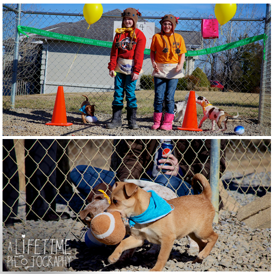 Pets-without-parents-puppy-super-bowl-puppybowl-party-Sevierville-TN-dogs-adoption-animal-shelter-3