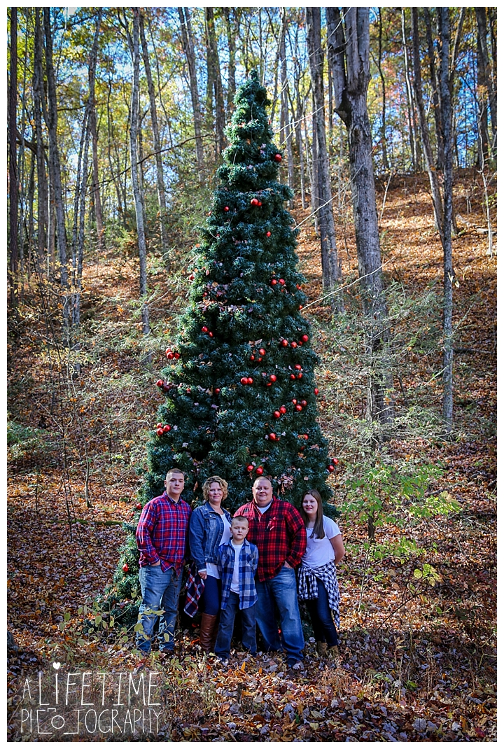 photographer-family-couple-gatlinburg-pigeon-forge-knoxville-sevierville-dandridge-seymour-smoky-mountains-townsend-one-fine-day_0108