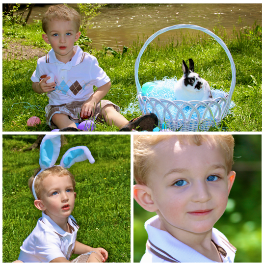 Pigeon_Forge_TN_Easter_Bunny_Pictures_3