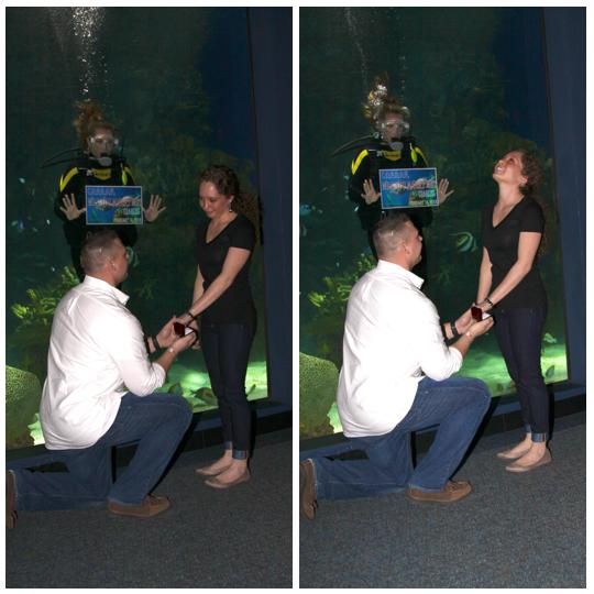 Ripleys-Aquarium-smokies-Gatlinburg-Engagement-marriage-Proposal-wedding-engaged-Couple-ideas-Pigeon-Forge-Photographer-Sevierville-Mountain-downtown-Photos-pictures-4