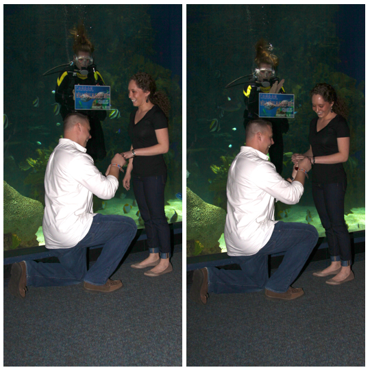 Ripleys-Aquarium-smokies-Gatlinburg-Engagement-marriage-Proposal-wedding-engaged-Couple-ideas-Pigeon-Forge-Photographer-Sevierville-Mountain-downtown-Photos-pictures-5
