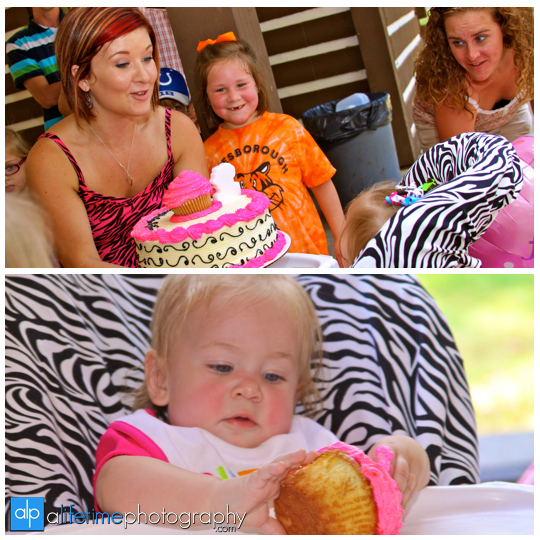 Rotary_Park_Birthday_Party_Photographer_Pictures_Family_Session_Johnson_CIty_Jonesborough_TN