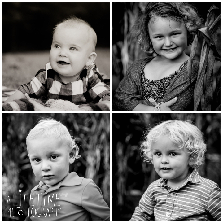sevierville-seymour-knoxville-pigeon-forge-maryville-dandridge-kodak-fall-harvest-autumn-family-photographer-photos-10