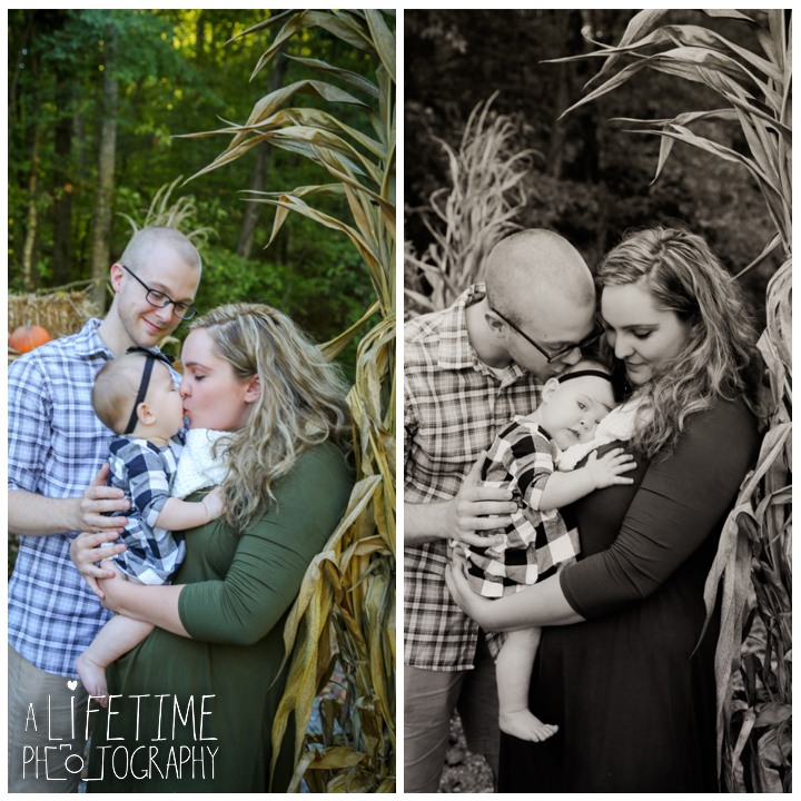 sevierville-seymour-knoxville-pigeon-forge-maryville-dandridge-kodak-fall-harvest-autumn-family-photographer-photos-2