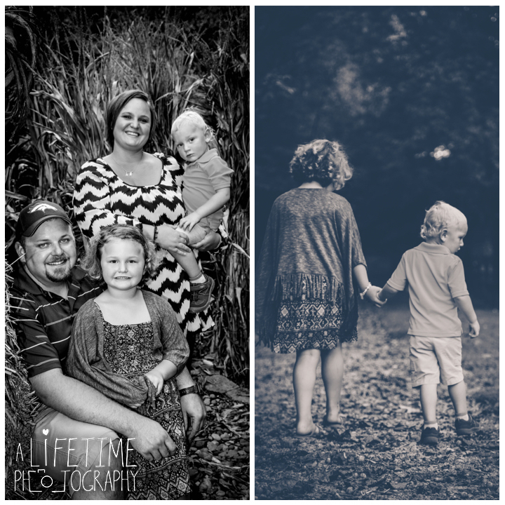 sevierville-seymour-knoxville-pigeon-forge-maryville-dandridge-kodak-fall-harvest-autumn-family-photographer-photos-6