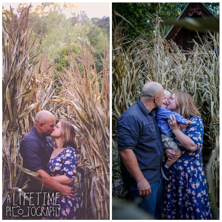 sevierville-seymour-knoxville-pigeon-forge-maryville-dandridge-kodak-fall-harvest-autumn-family-photographer-photos-9