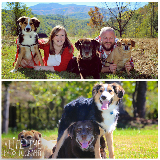 Smoky-Mountain-Family-Photographer-Dog-pet-Pigeon-Forge-Gatlinburg-1