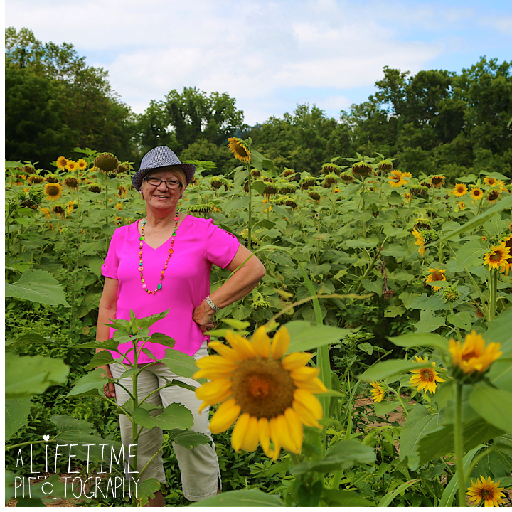 Sunflower-field-knoxville-TN-mother-daughter-family-photographer-3
