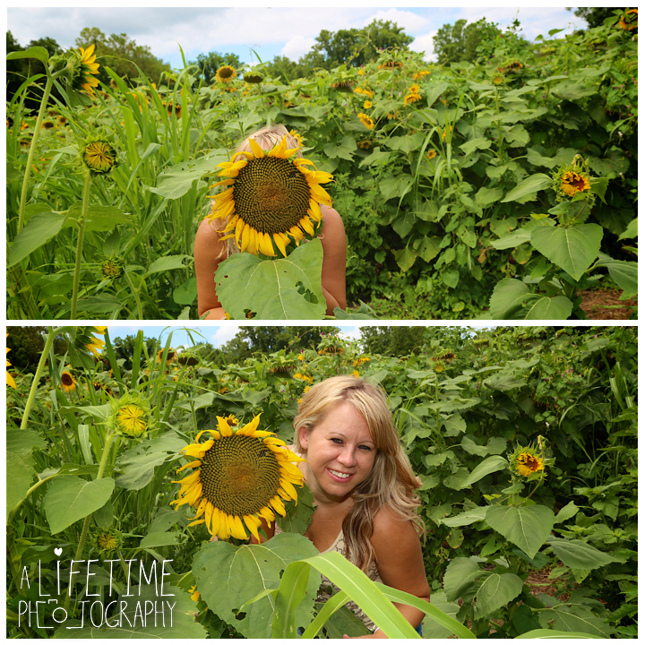 Sunflower-field-knoxville-TN-mother-daughter-family-photographer-5