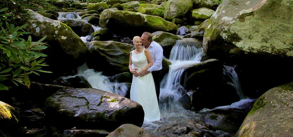 Phyllis tom gsmnp gatlinburg tn photographer a for Motor trails in gatlinburg tn