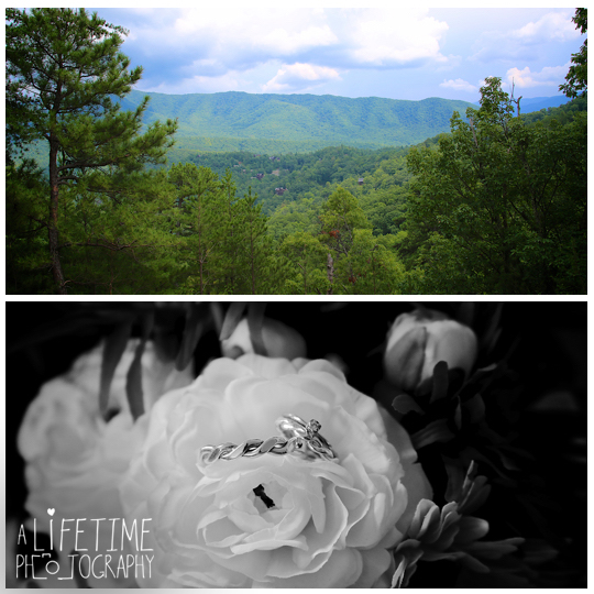 Wears-Valley-Townsend-wedding-Photographer-cabin-Smoky-Mountains-Pigeon-Forge-Knoxville-Gatlinburg-1