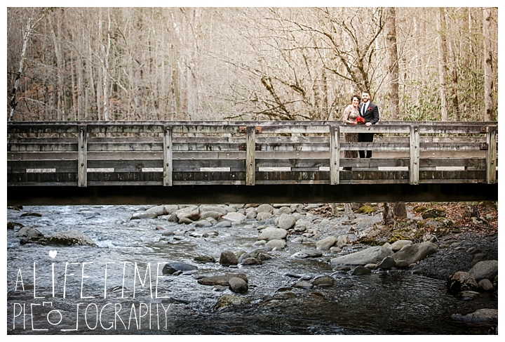 Wedding Newlywed Photographer Gatlinburg-Pigeon-Forge-Knoxville-Sevierville-Dandridge-Seymour-Smoky-Mountains-Townsend-Photos-Greenbriar Session-Professional-Maryville_0217