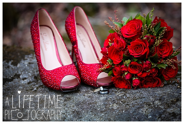 Wedding Newlywed Photographer Gatlinburg-Pigeon-Forge-Knoxville-Sevierville-Dandridge-Seymour-Smoky-Mountains-Townsend-Photos-Greenbriar Session-Professional-Maryville_0222