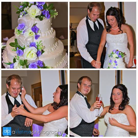 Wedding_Photographer_Elizabethton_Stoney_Creek_Roan_Mountain_View_Cake_Cutting_Photography_pictures_photos_pics