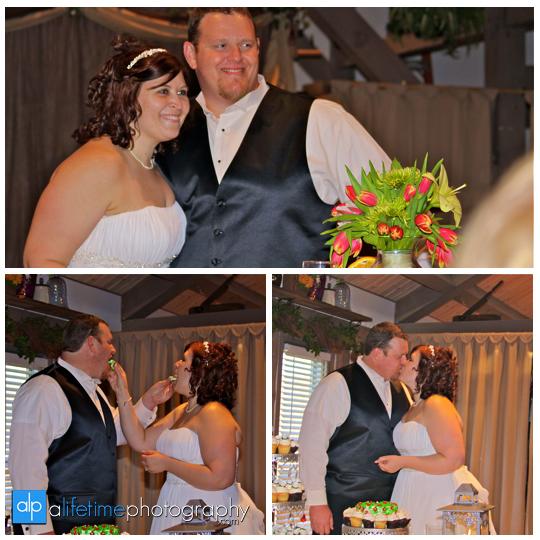 Wedding_Photographer_townsend_Barn_Event_Center_Smoky_Mountain