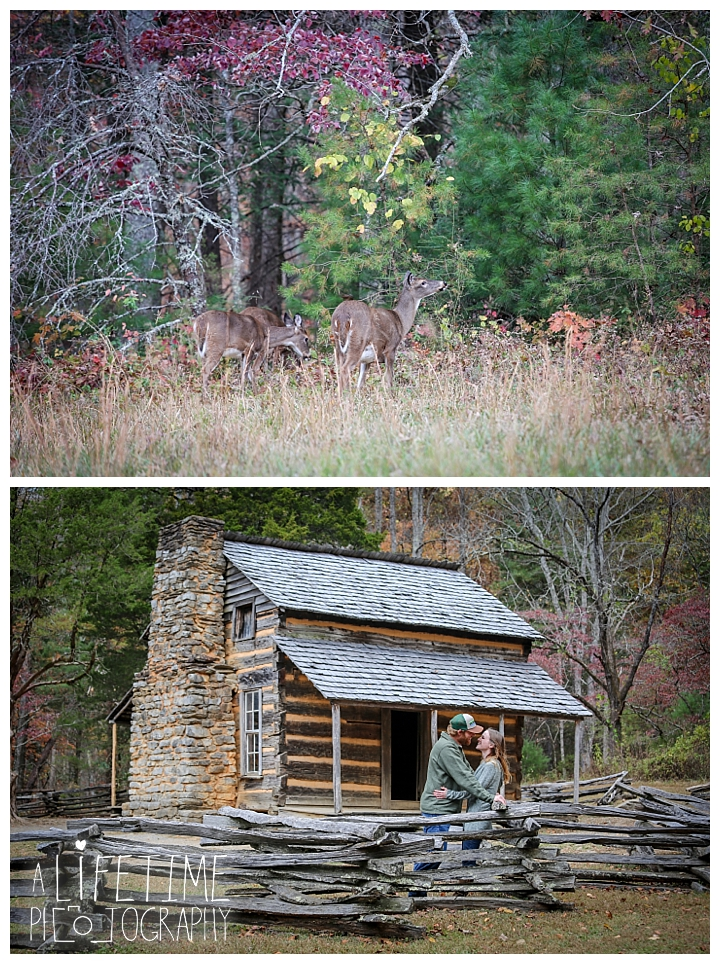 engagement-cades-cove-photographer-family-gatlinburg-pigeon-forge-knoxville-sevierville-dandridge-seymour-smoky-mountains-couple-townsend_0070