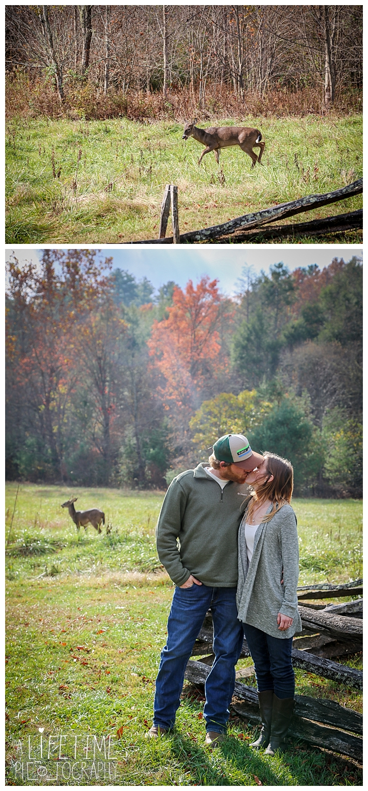engagement-cades-cove-photographer-family-gatlinburg-pigeon-forge-knoxville-sevierville-dandridge-seymour-smoky-mountains-couple-townsend_0084