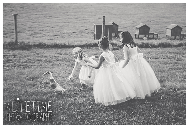 wedding-photographer-bristol-tn-johnson-city-kingsport-fern-valley-farm-blountville-knoxville-photos-bride-groom_0037