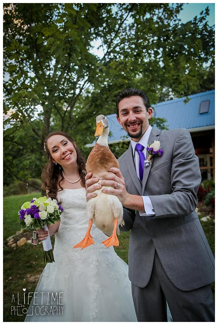 wedding-photographer-bristol-tn-johnson-city-kingsport-fern-valley-farm-blountville-knoxville-photos-bride-groom_0048
