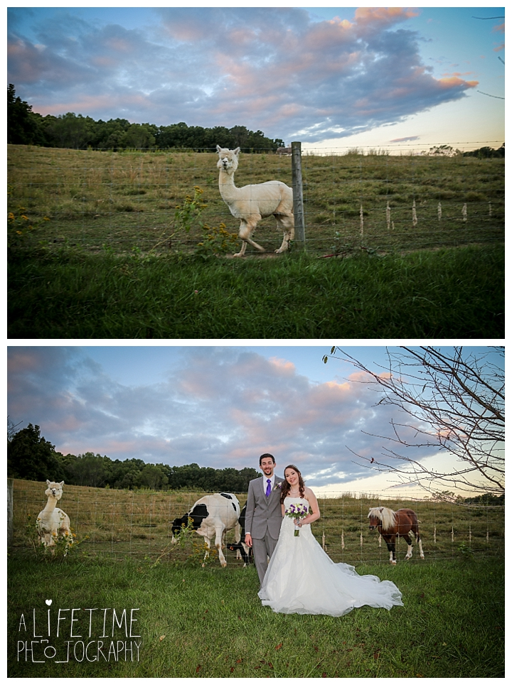 wedding-photographer-bristol-tn-johnson-city-kingsport-fern-valley-farm-blountville-knoxville-photos-bride-groom_0049